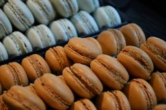 Brown i błękitni macarons Obraz Royalty Free