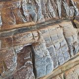 Brown i białe linie w naturalnym kamieniu zdjęcie royalty free