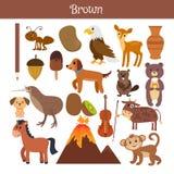 brown Impari il colore Insieme di istruzione Illustrazione della c primaria Fotografia Stock Libera da Diritti