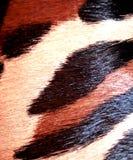 Brown ist weißer synthetischer Pelz Lizenzfreies Stockfoto