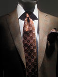Brown jacket and tie. Light brown checkered jacket with white shirt, patterned brown tie and handkerchief stock photo