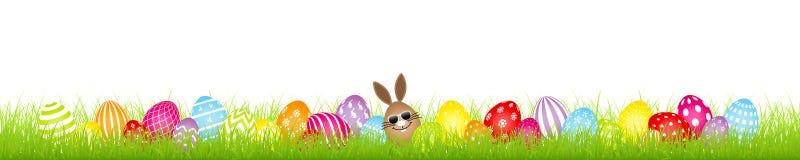 Brown jajka królika okulary przeciwsłoneczni I Dwadzieścia osiem Kolorowi Wielkanocnych jajek łąki sztandarów ilustracji