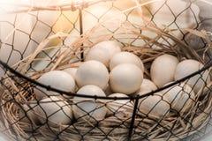 Brown jajka przy sianem gniazdują w kurczaka gospodarstwie rolnym przedstawiającym w postaci Zdjęcie Royalty Free