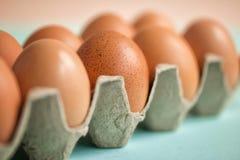 Brown jajka w kartonowym kocowaniu Ekologiczny kocowanie wielkanoc szcz??liwy Selekcyjna ostro?? Frontowy widok fotografia royalty free