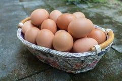 Brown jajka w koszu Zdjęcia Royalty Free