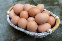 Brown jajka w koszu Obrazy Royalty Free