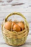 Brown jajka w Słomianym koszu fotografia stock