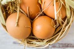 Brown jajka w Słomianym koszu obrazy stock