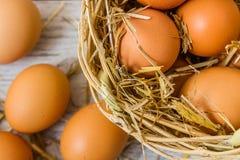Brown jajka w Słomianym koszu fotografia royalty free