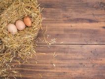 Brown jajka w siana gniazdeczka eco Wiejskim tle z brown kurczak słomą na tle stare drewniane deski i jajkami Obraz Stock