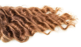 Brown kędzierzawy włosy odizolowywający na bielu Obrazy Royalty Free