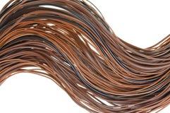 Brown-Kabelnetzwerk, globales Computersystem Lizenzfreie Stockfotografie