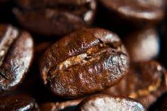 Brown-Kaffeebohnebeschaffenheit Stockbilder
