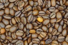 Brown-Kaffeebohnehintergrund - nahes hohes Stockbild