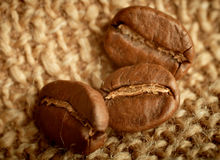 Brown-Kaffeebohnen. Lizenzfreies Stockbild