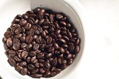 Brown-Kaffeebohnen im Cup, getrenntes Weiß Stockfoto