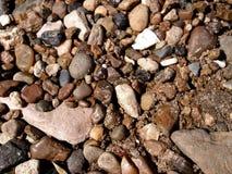 Brown kamienie na piasku północna rzeka zdjęcia stock