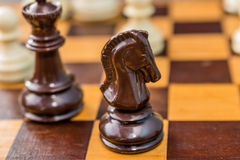 Brown knight chess piece on the board background Royalty Free Stock Photos