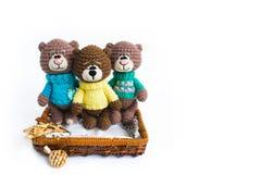 3 brown knited niedźwiedzia na białym tle zdjęcie royalty free