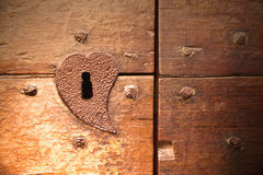 Brown knocker and wood  door castiglione Royalty Free Stock Photo