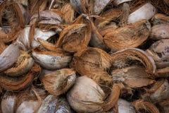 Brown-Kokosnuss-Hülsen stockbilder