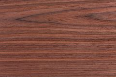 Brown koloru natury wzoru szczegół rosewood obraz royalty free