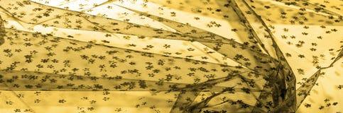 brown koronka na białym tle Przedstawia odkrywczość koronka m obraz royalty free