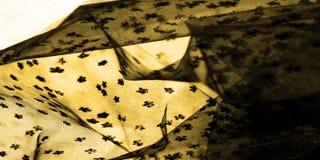 brown koronka na białym tle Przedstawia odkrywczość koronka m obrazy stock