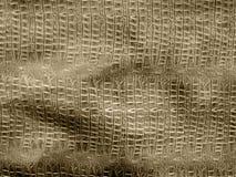 Brown krokodyla skóra Obrazy Royalty Free