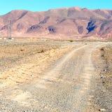 brown krzak w dolinnym Morocco   africa atlant suchy m Obraz Royalty Free