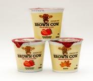 Brown-Kuhjoghurt Lizenzfreies Stockfoto