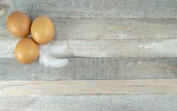Brown kurczaka jajka z piórkiem przy drewnianym tłem zdjęcia stock
