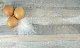 Brown kurczaka jajka z piórkiem przy drewnianym tłem zdjęcia royalty free