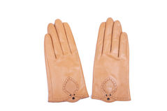 Brown ladies leather gloves Stock Image