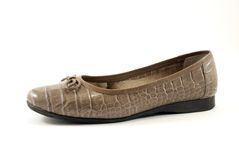 Brown lady moccasin Royalty Free Stock Photography