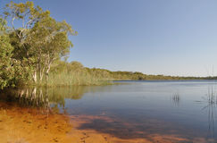 Brown Lake. On North Stradbroke Island, the worlds 3 largest sand island Royalty Free Stock Image