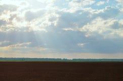 Brown-Landwirtschaftsfeld und blauer Himmel Stockfotos