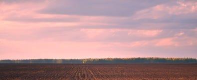 Brown-Landwirtschaftsfeld und blauer Himmel Lizenzfreies Stockbild