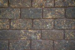 Brown laterite brick wall Royalty Free Stock Photo