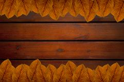 Brown leafs on wood background Royalty Free Stock Photography