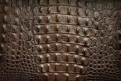 Brown leather. Close-up of brown leather texture Stock Photo
