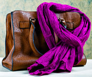 Brown leather bag and  scarf Stock Images
