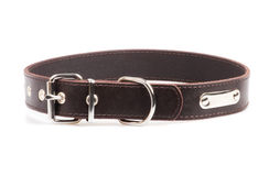 Brown leather collar Royalty Free Stock Photography