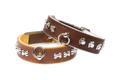 Brown Leather Collars Stock Photography