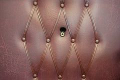 Brown Leather Door with Gold Peephole Royalty Free Stock Photos