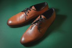 Brown leather executive shoes. Over green Royalty Free Stock Image