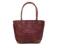 Brown Leather Female Bag Royalty Free Stock Images
