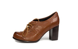 Brown leather ladies court shoe Stock Photos