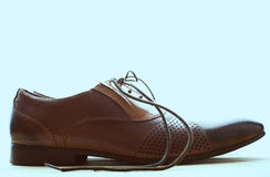 Brown leather men's shoes Stock Photography