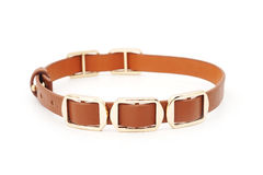 Brown leather necklace Stock Photo